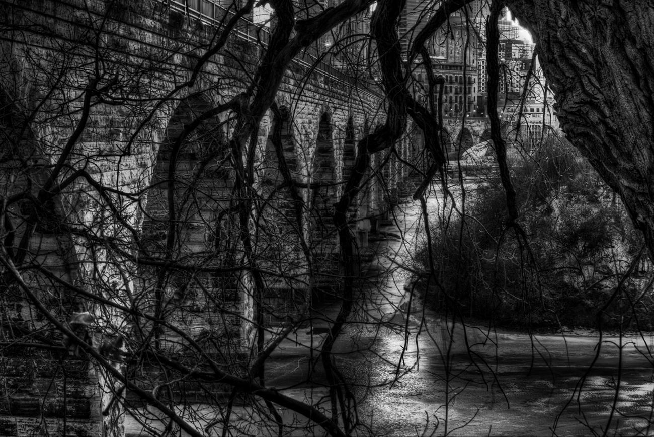 1300-tree shot.jpg