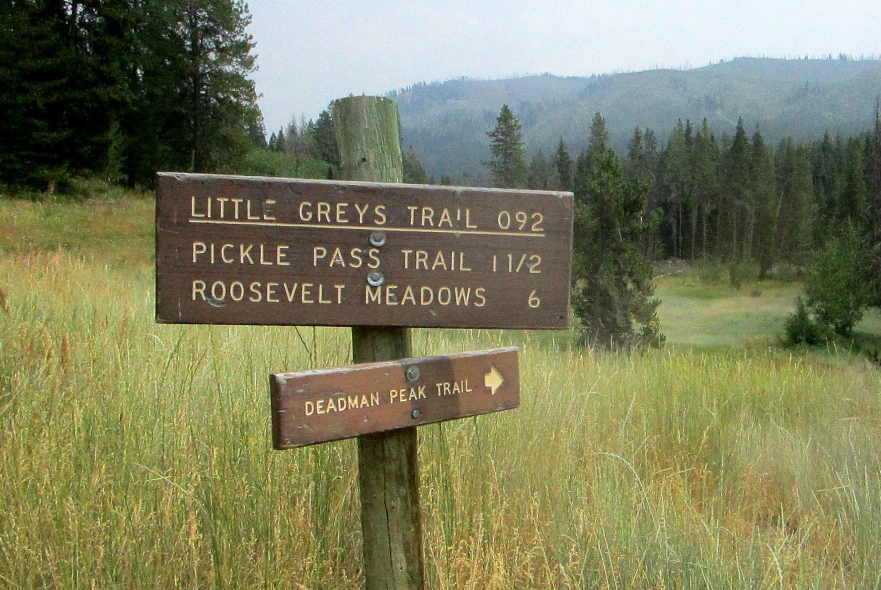 2017 Little Greys trails.jpg