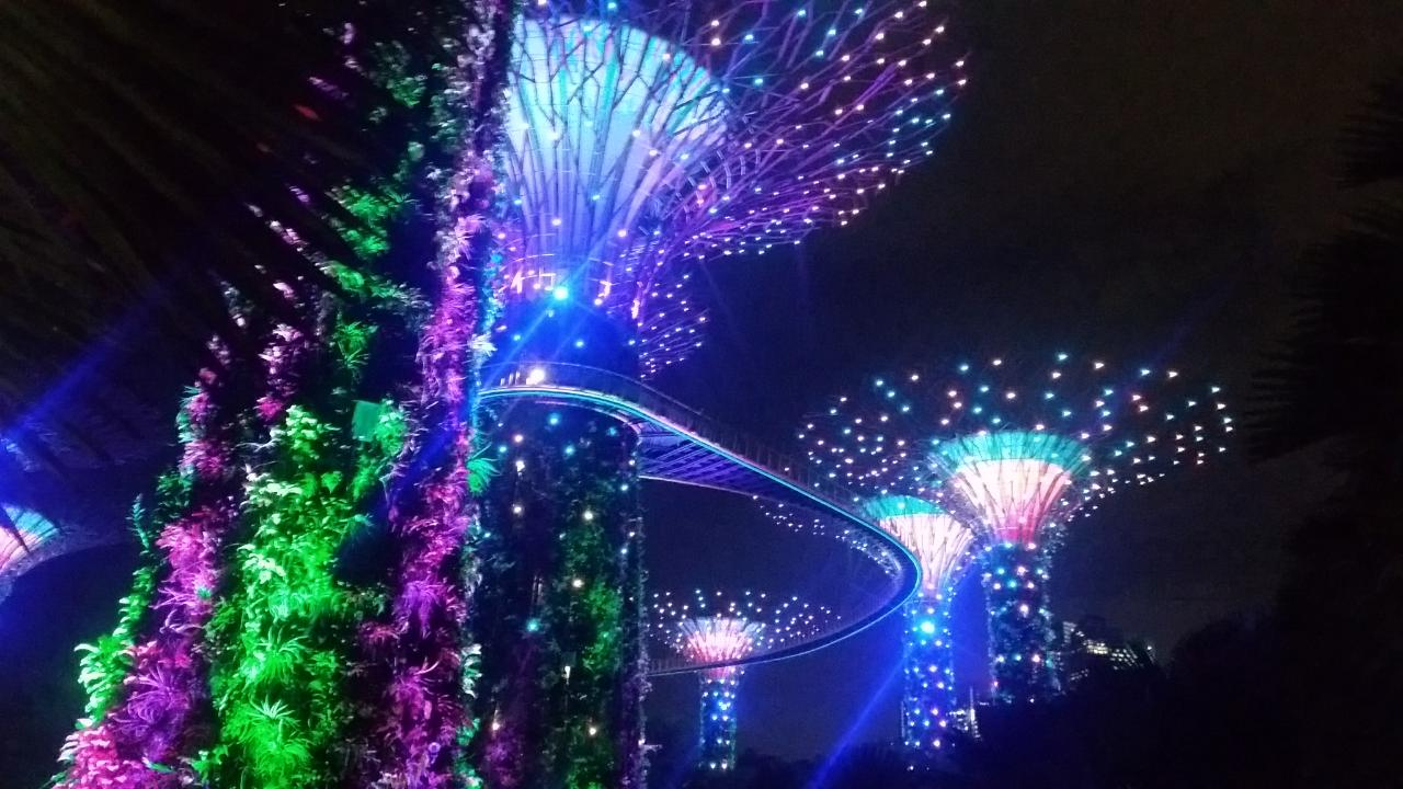 2018-10-12  Garden by the  Bay- Singapore 19_1539363079540_67.JPG