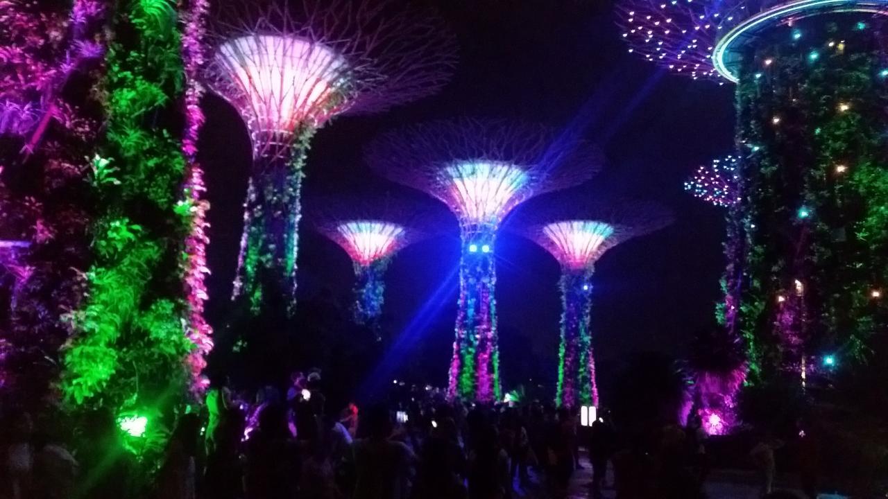 2018-10-12  Garden by the  Bay- Singapore 24_1539363056957_27.JPG