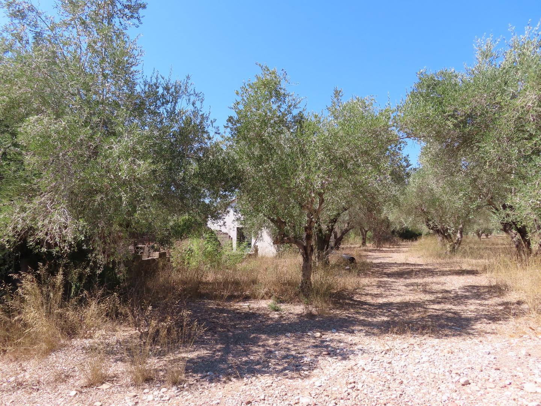 2021-09-25 Road to Olympia, Greece   (5).jpg
