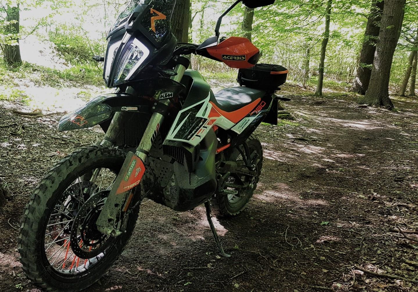 790R-dirty_woods.jpg