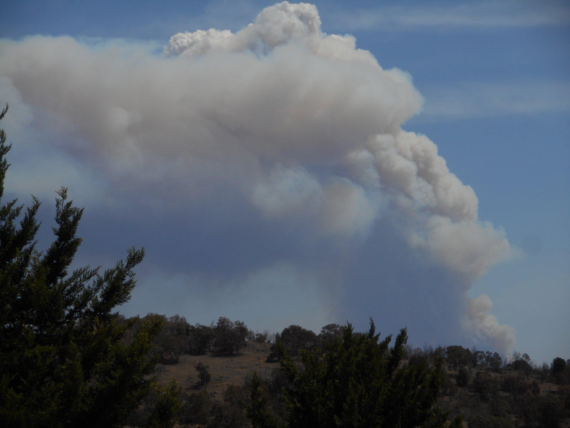 australia day bushfire.JPG