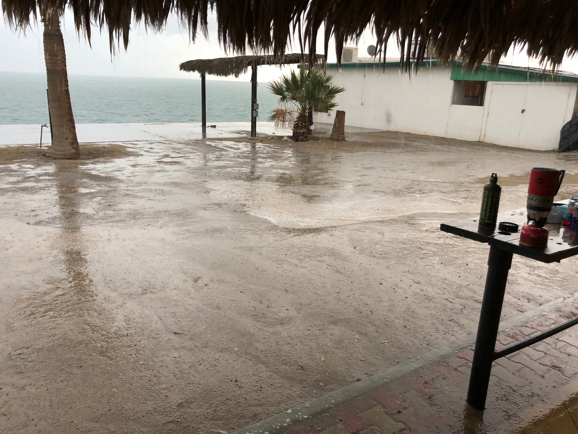 Baja rain sf.jpg