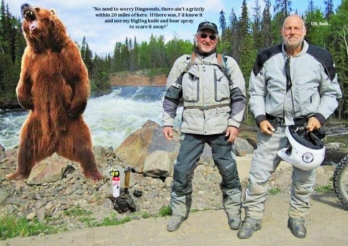 Bigdog and Dingweeds Meet Grizzly in Alaska  #5  by Ron Petitt  2019 (4).jpg