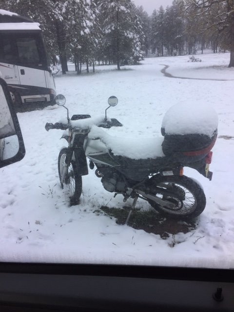 Bike in Snow.JPG