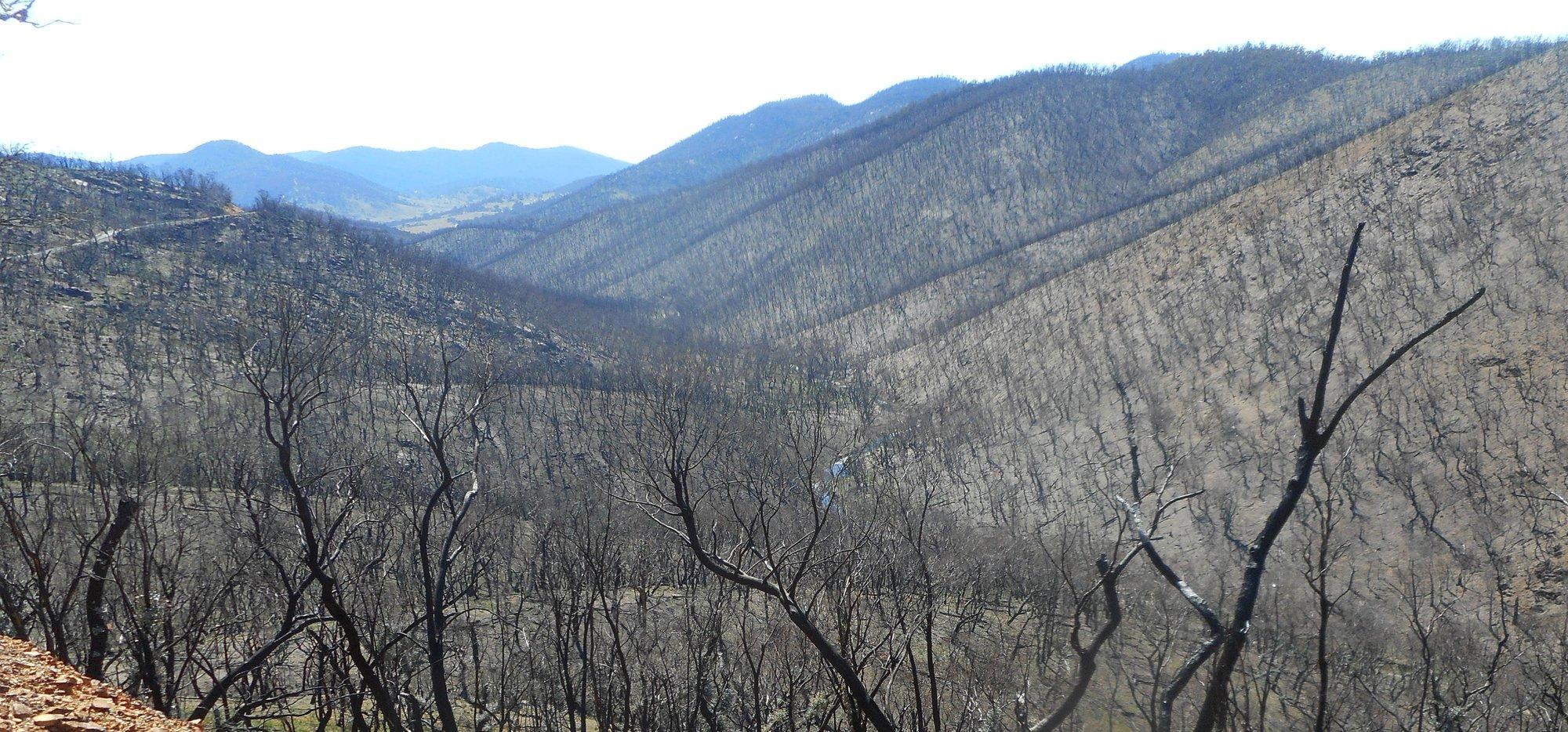 burnt gudgenby valley.jpg