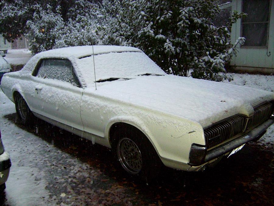Cougar snow 2012.jpeg