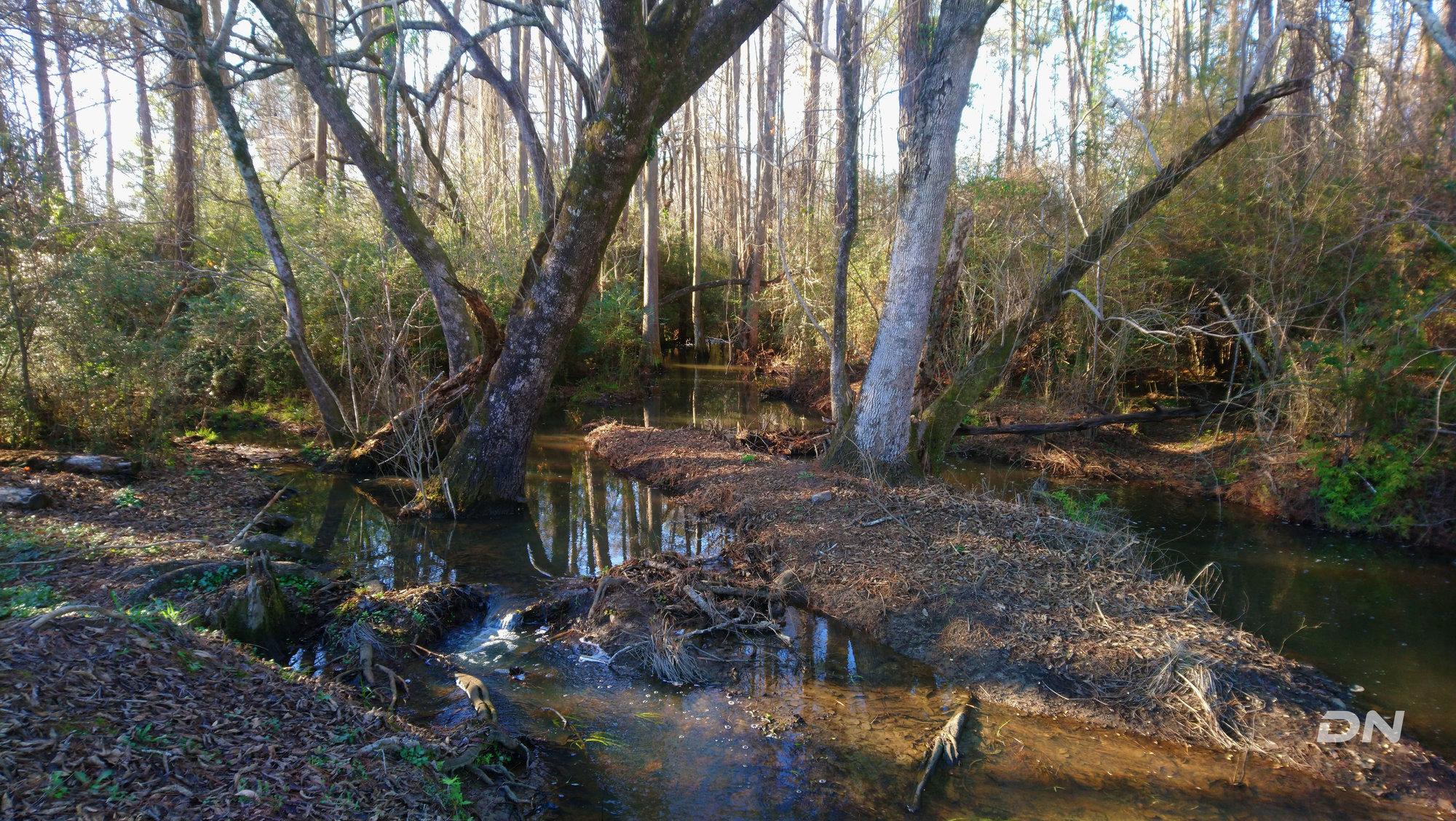 Creek at the railroad tracks.jpg
