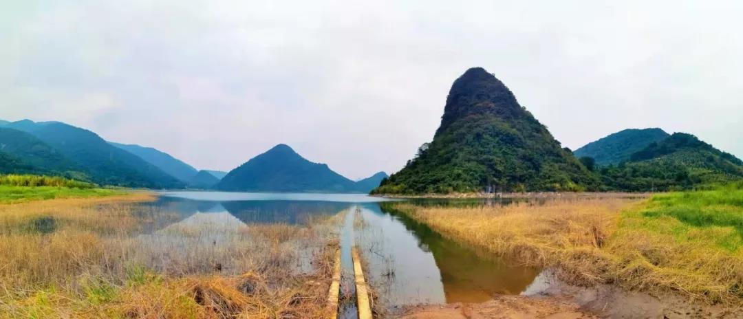 Guangdong-2.jpg