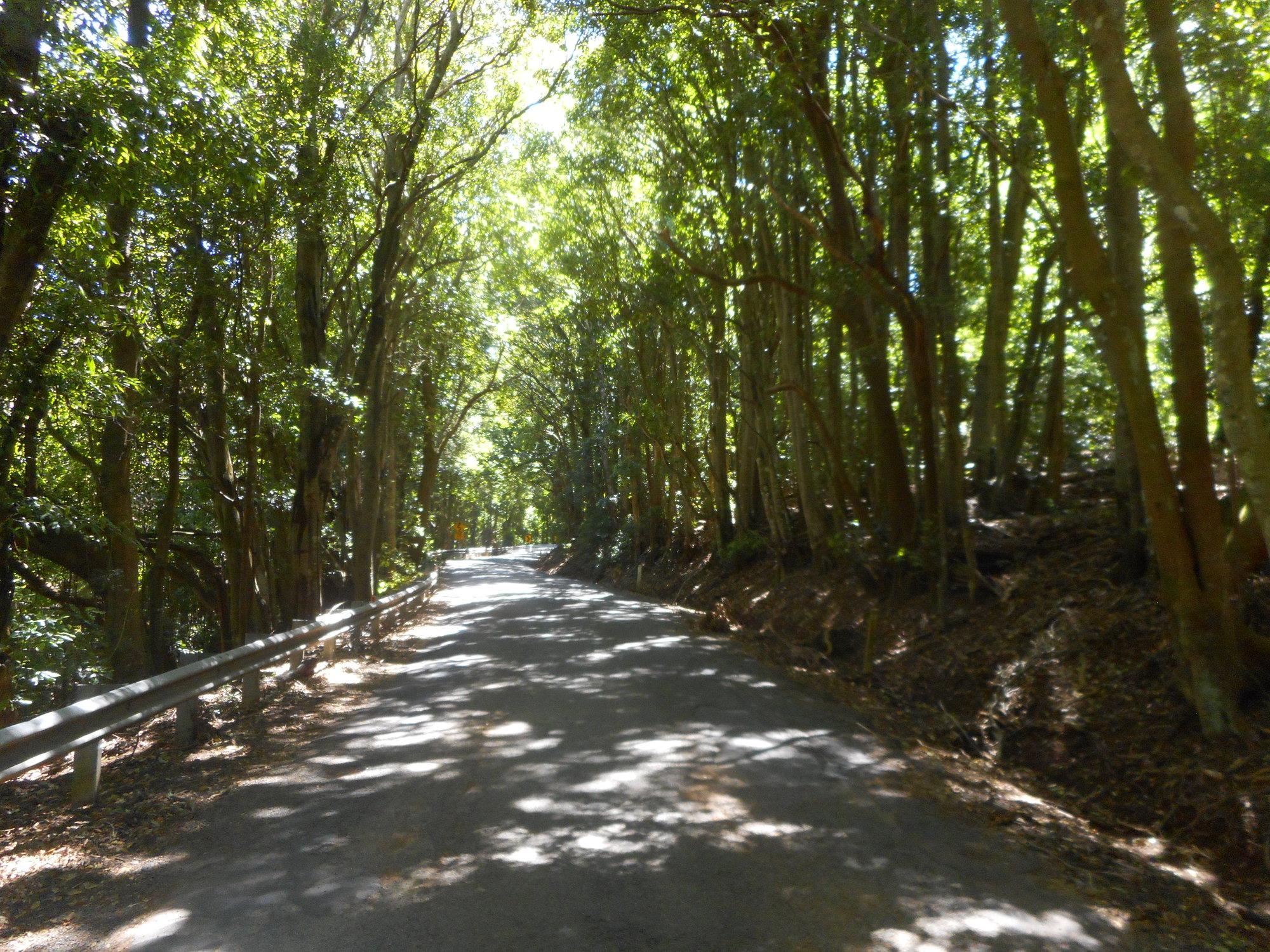 kv road.JPG