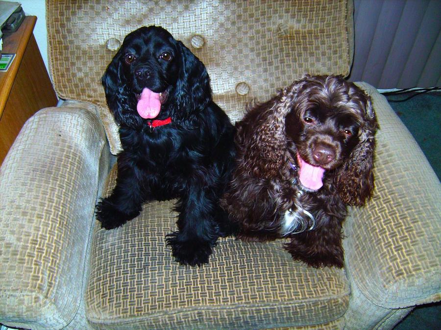 Libby & Myshalla on chair 2.jpg