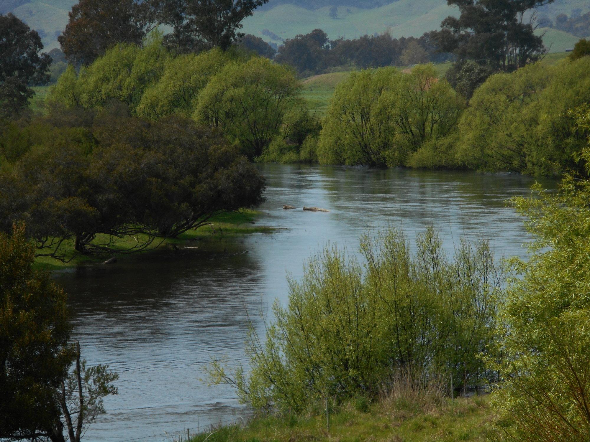 Mitta river.JPG
