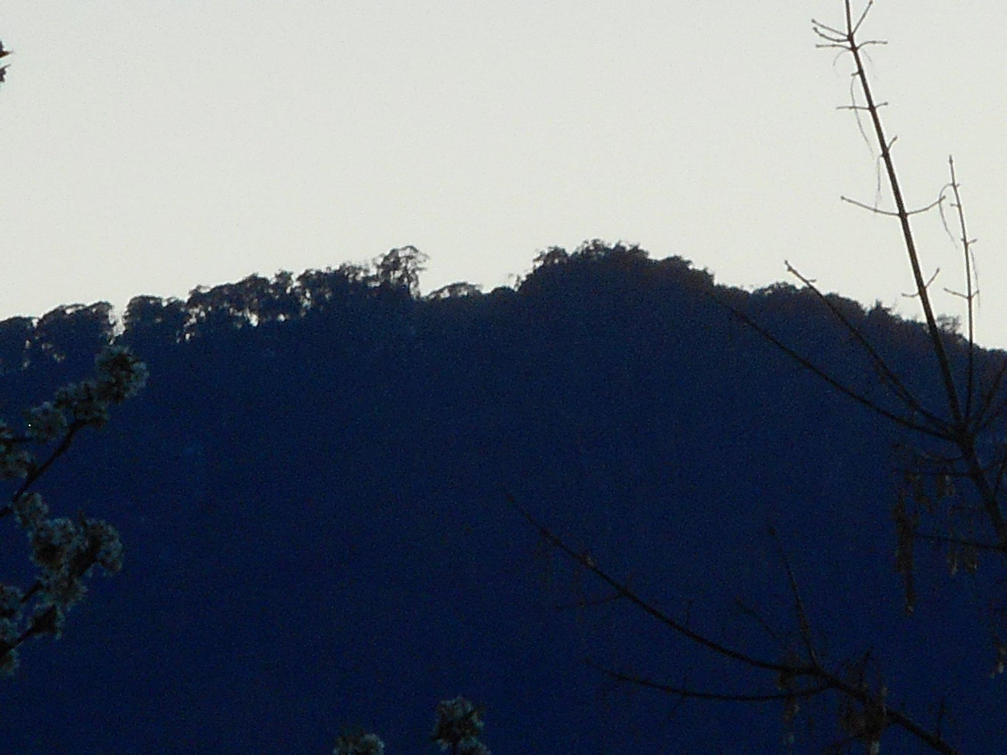 Mt Emu from Bogong Moth.JPG