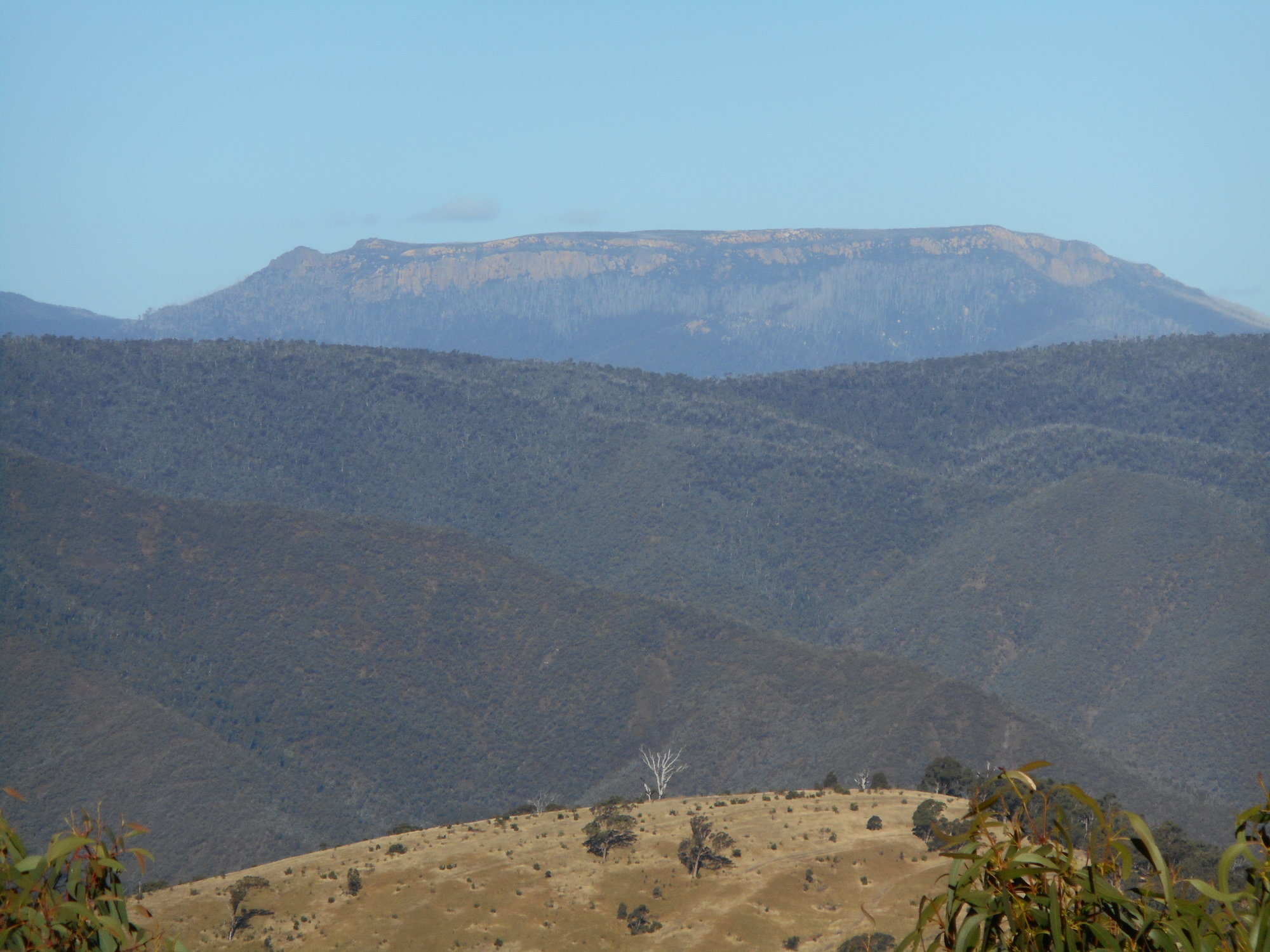 Mt Wellington from B1.JPG