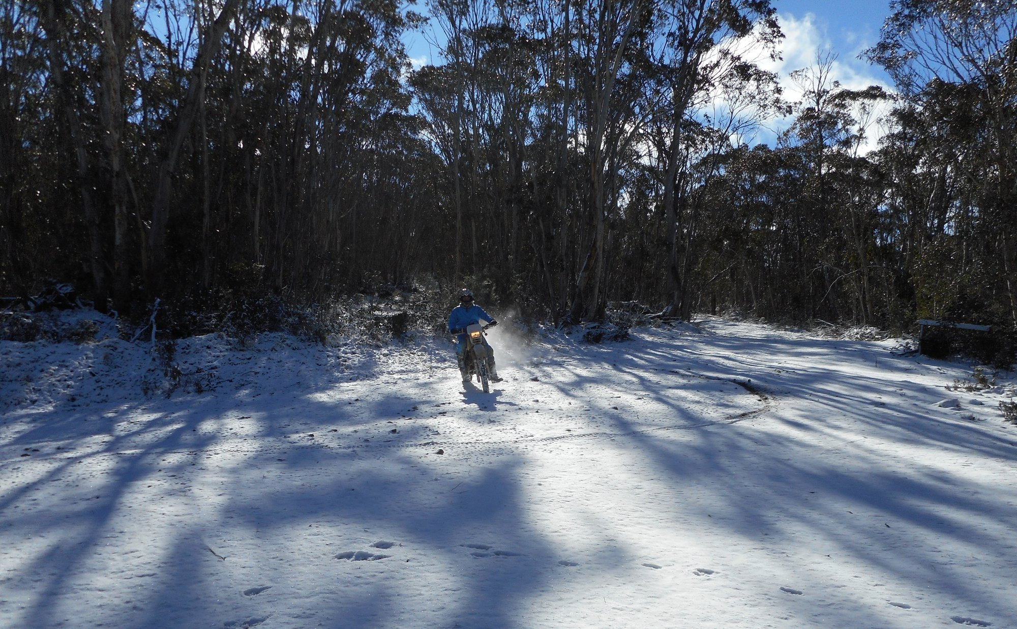 Pete Tallaganda snow (2).JPG