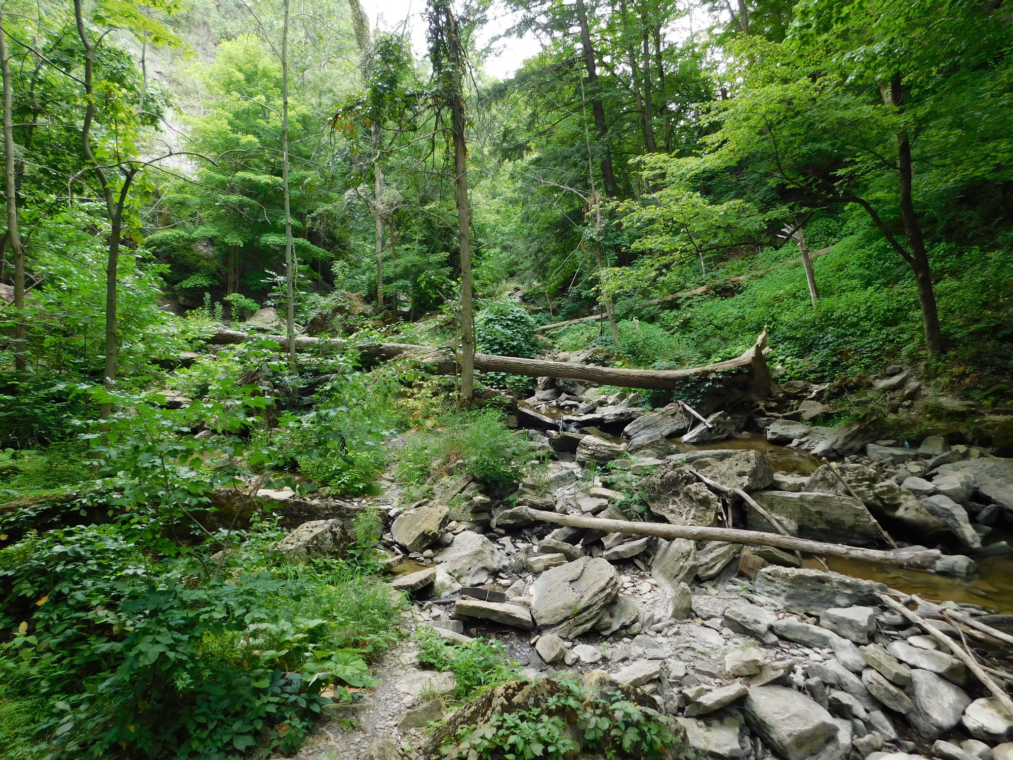 Ride 45 Waterfalls 062.jpg