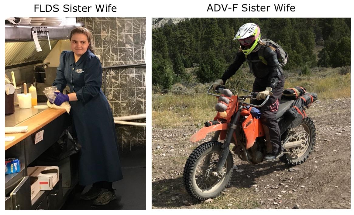 SisterWife.jpg