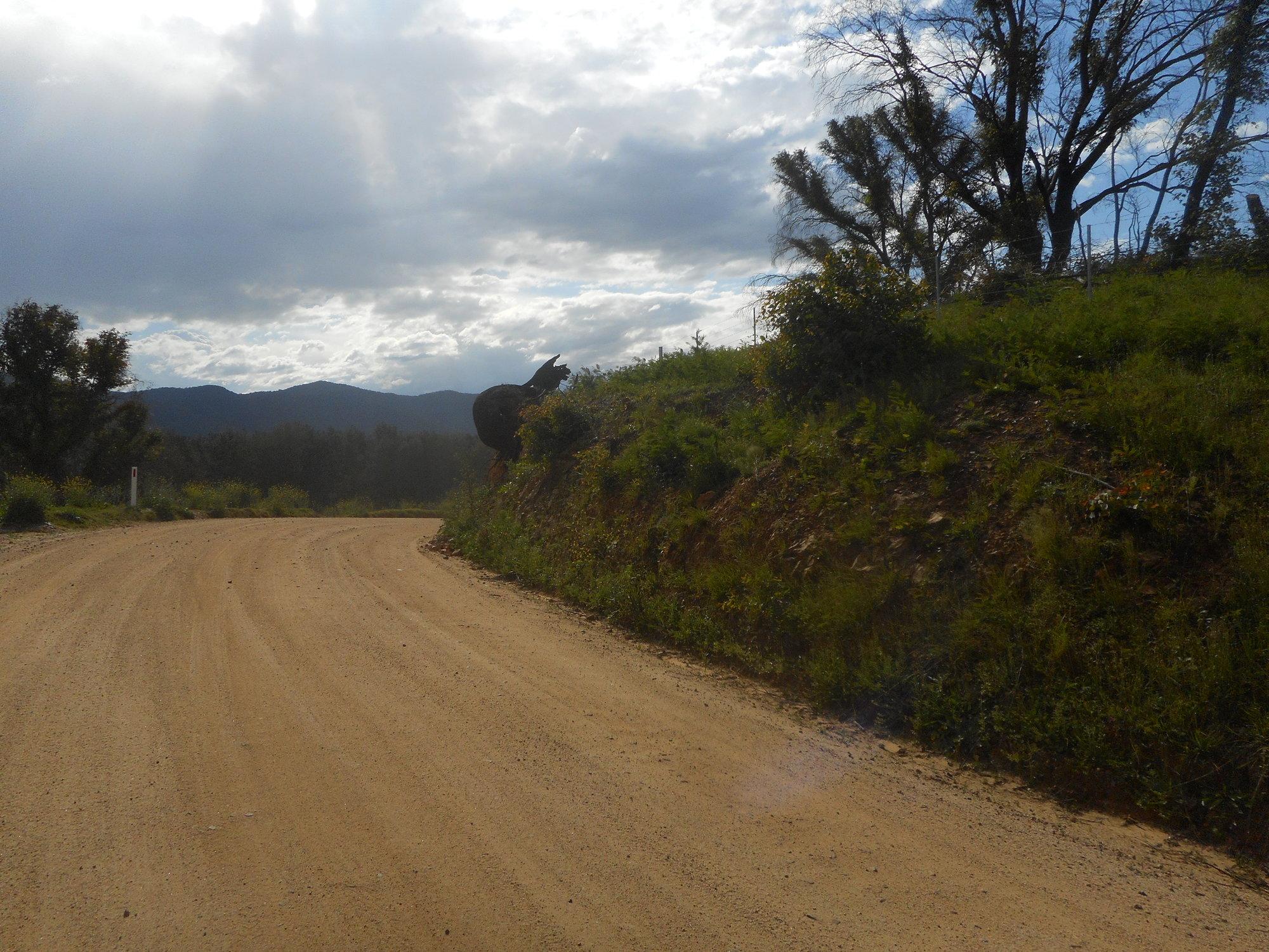 snail road.JPG