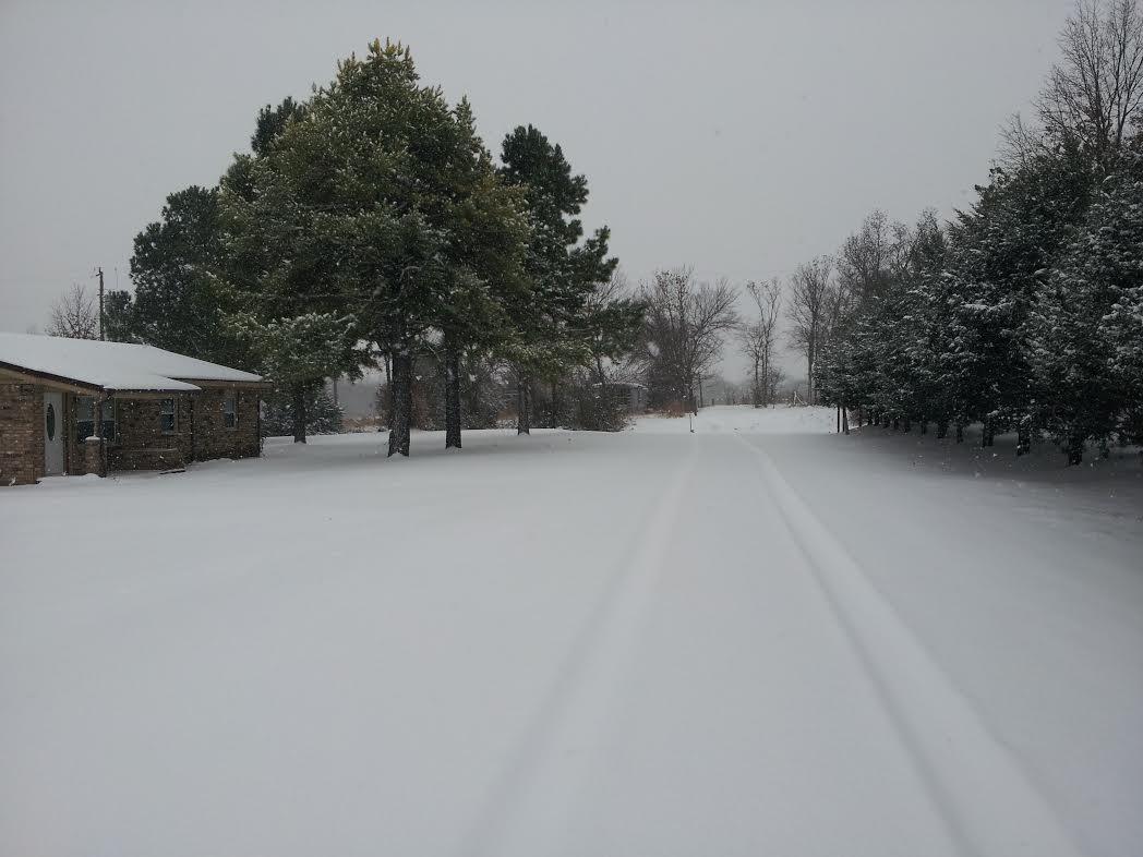 Snow day 6.jpg