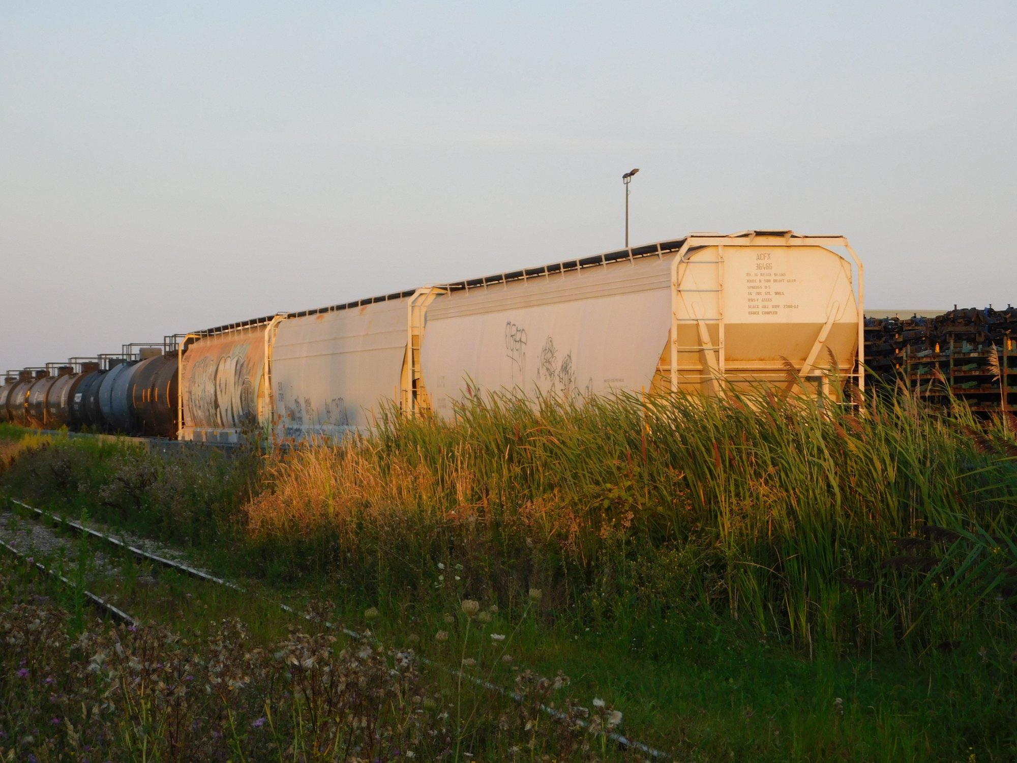 tra 054.jpg