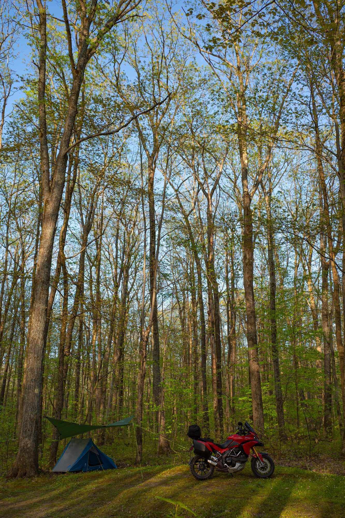 Tracy Ridge Camp Vert-0001720.JPG