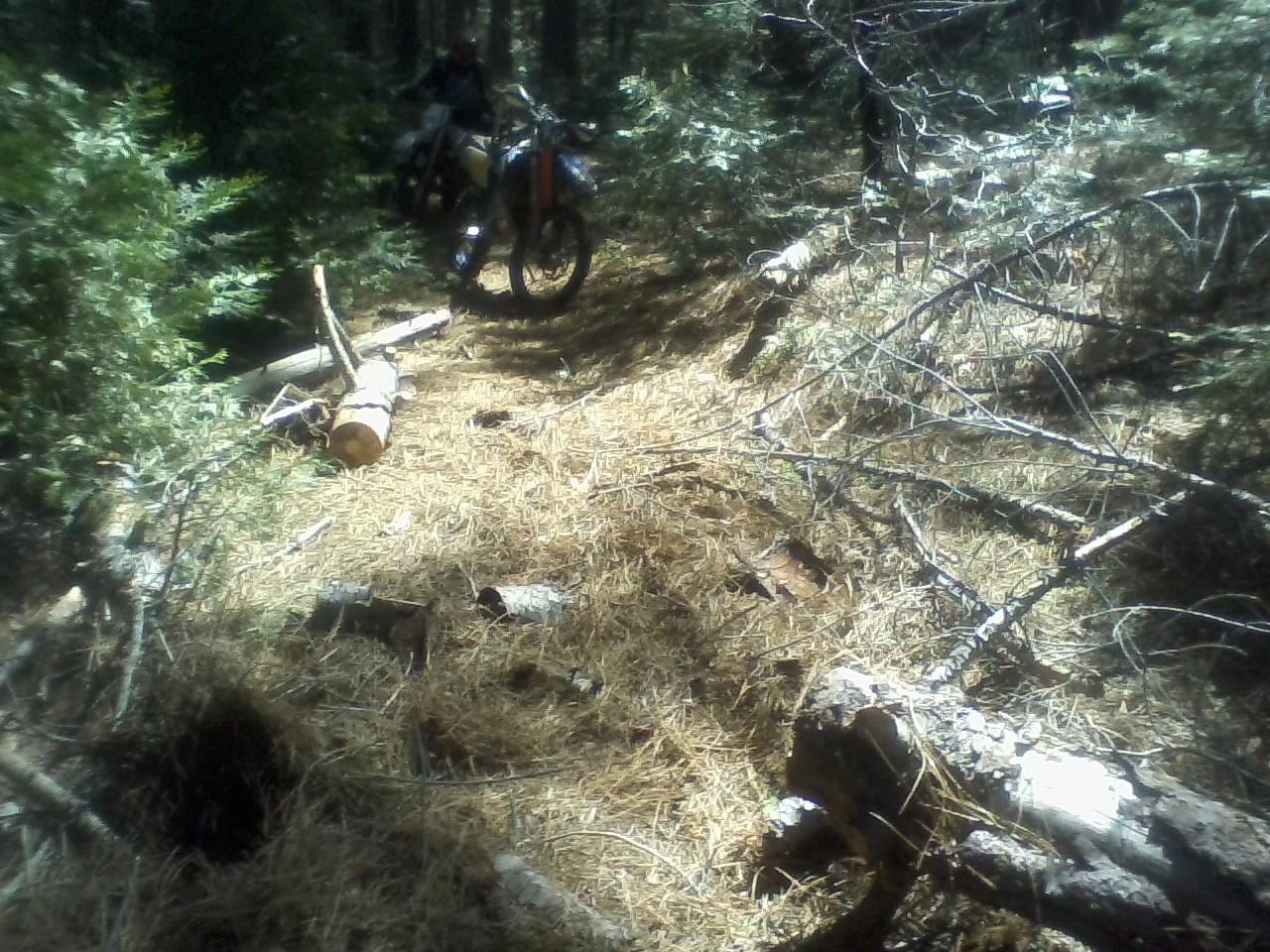 trail work.jpg