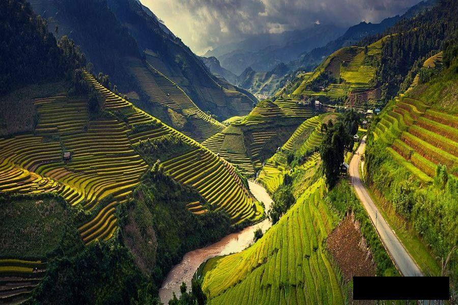 Vietnam terrace.jpg