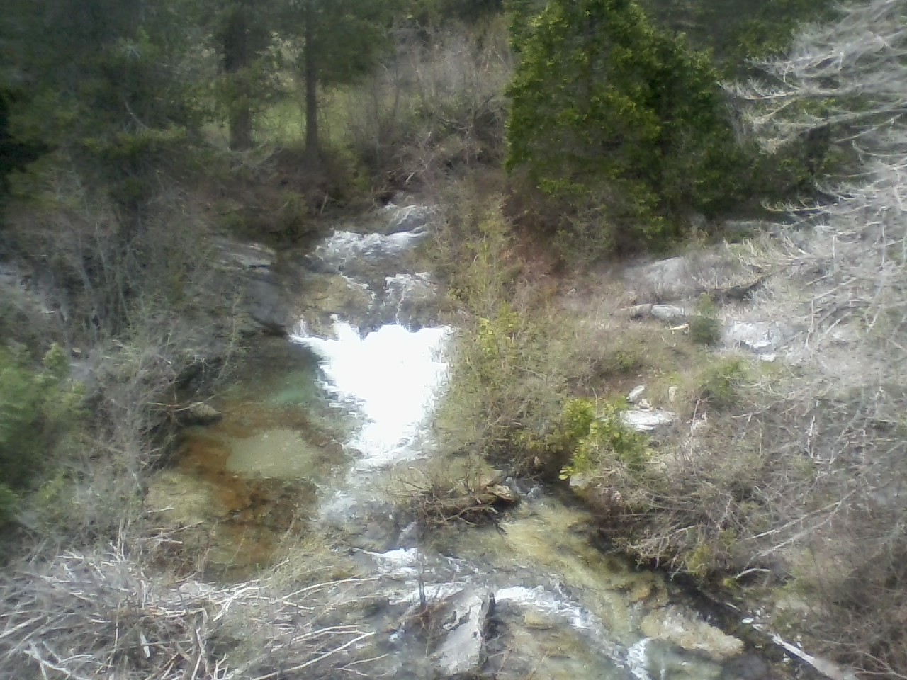 whiskars creek.jpg