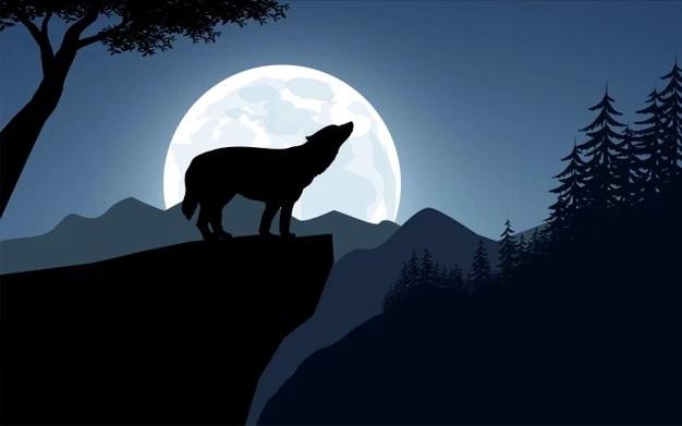 wolf-howling-cliff_104785-528.jpg