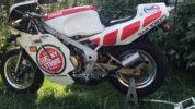 1988 Yamaha YSR50: Maximum mini bike