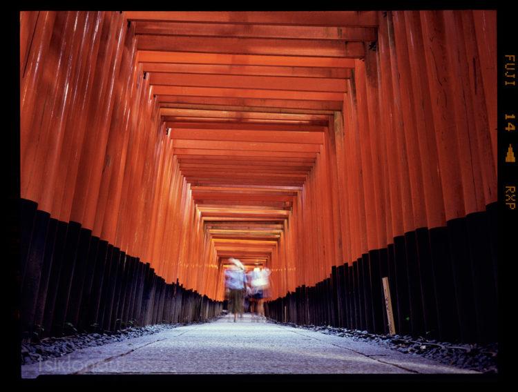 Bambooway (Japan) Fuji GA645i, Fuji Provia 400X film